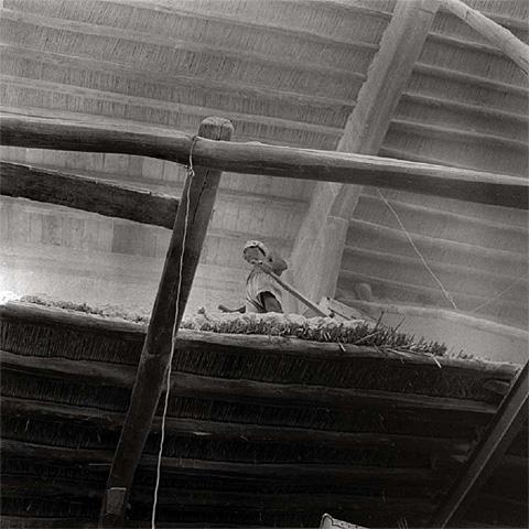 Lipari, 1952. Photographie de Cecilia Mangini
