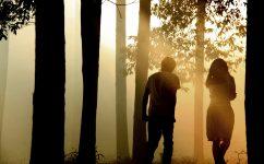 La Ballade de l'impossible – Norwegian Wood