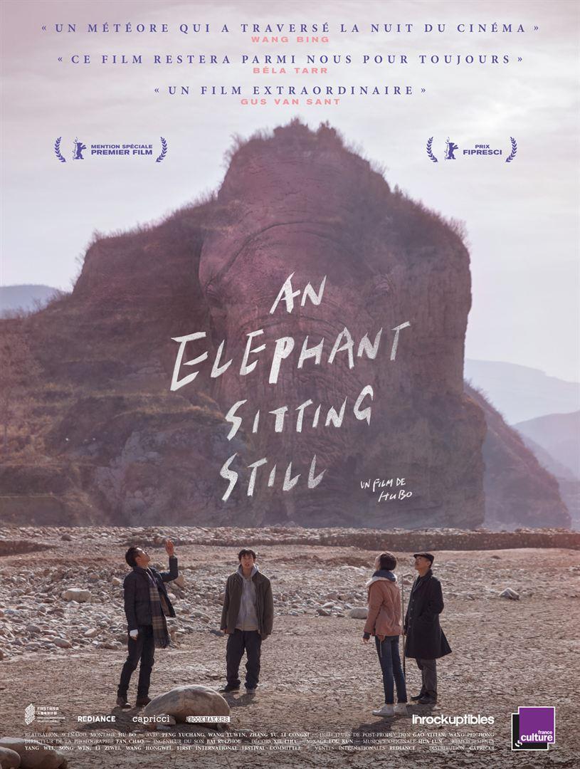 Elephant Sitting Still