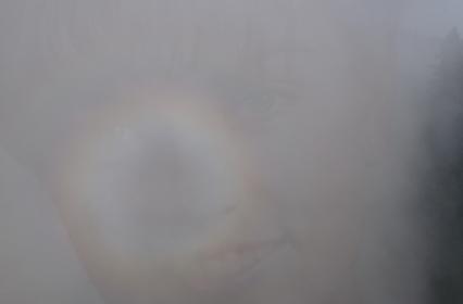Twin Peaks, saison 3 – Le Retour des images