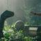 14 notes sur Jurassic World : Fallen Kingdom