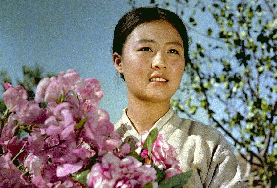 Regards sur le cinéma nord-coréen