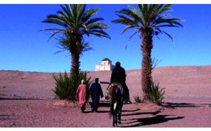 Panorama des cinémas du Maghreb, du 4 au 8 mai, 6e édition