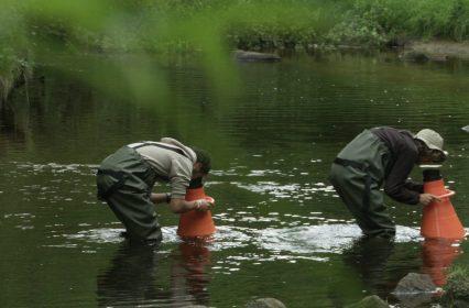 La Ligne de partage des eaux