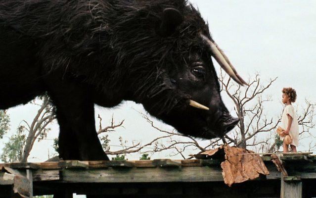 Les Bêtes du Sud sauvage