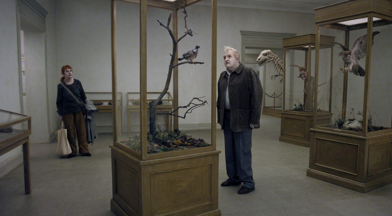 """Résultat de recherche d'images pour """"a pigeon sat on a branch reflecting on existence"""""""