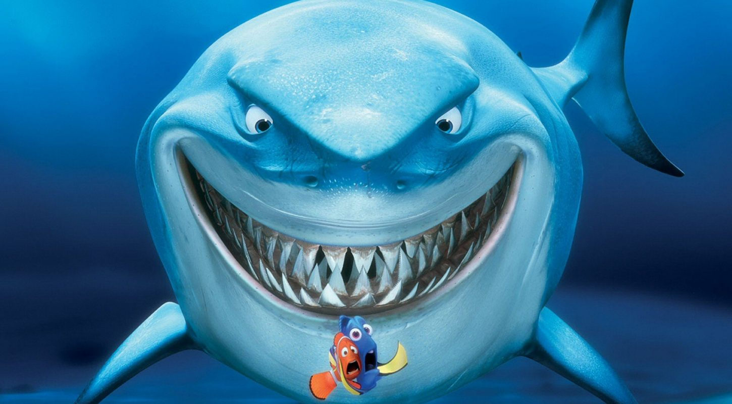 Le « Shark Movie »