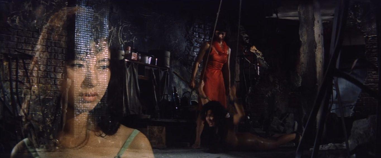 Seijun Suzuki en Blu-Ray : La Barrière de chair, Histoire d'une prostituée, Le Vagabond de Tokyo